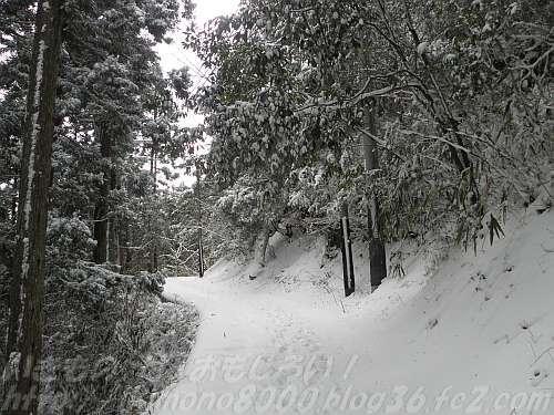 雪が積もった不動坂