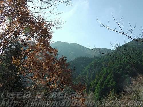 北側なら登山道から山頂を望める金剛山