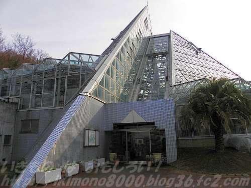 花の文化園のピラミッド風温室