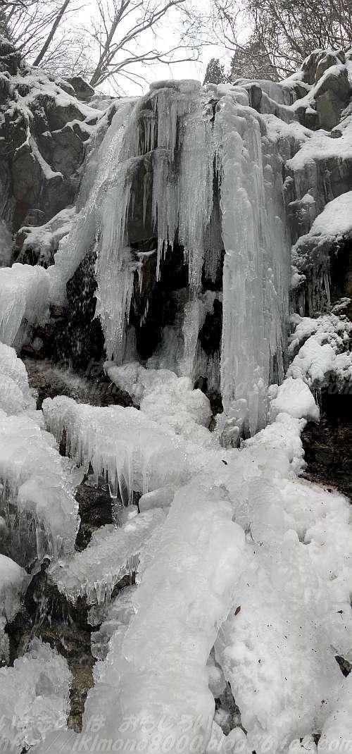 雪が少ないので氷が強調されたモミジ谷第六堰堤氷瀑