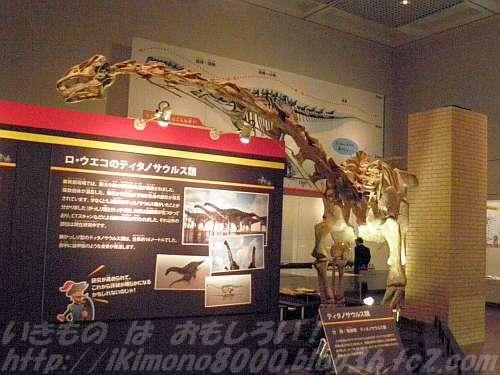 マラウイサウルス全身骨格