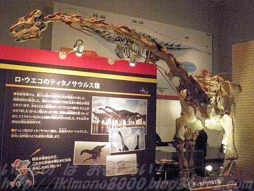 ティタノサウルス類のマラウイサウルス全身復元骨格