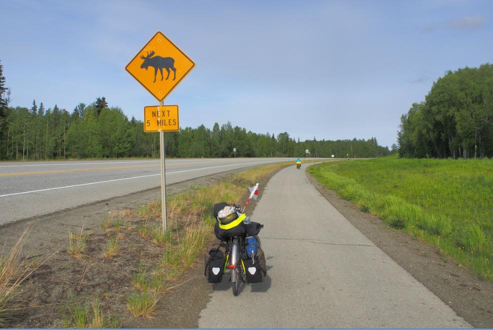5マイル先、ムース20150606