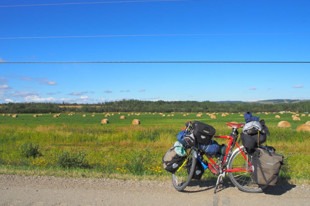 20150814カナダ牧草地