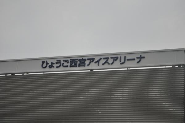 _DSC0731.JPG