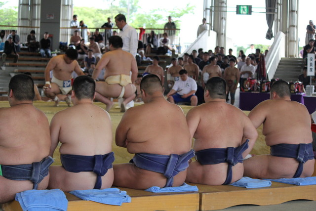 記 アマチュア 相撲 観戦