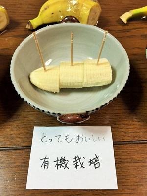 バナナ食べ比べ5