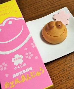カエルまんじゅう・さくら味2