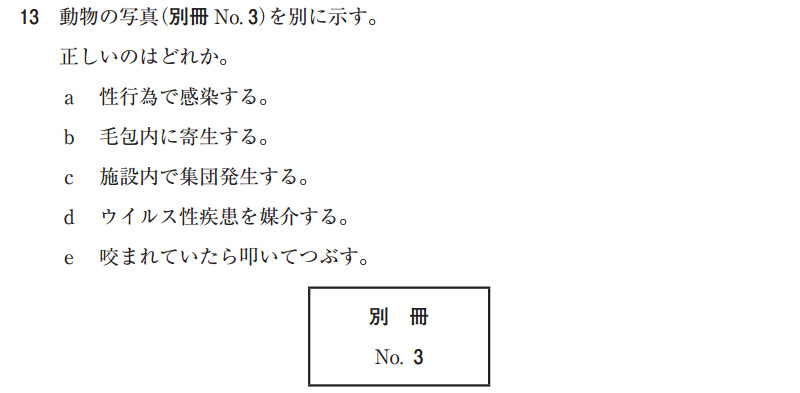 109a13.jpg