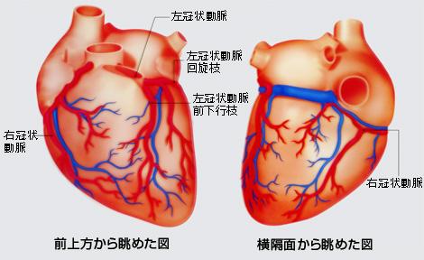 pict2.jpg