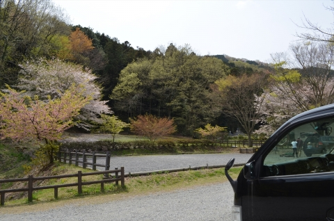 yuzunosato1 020_R