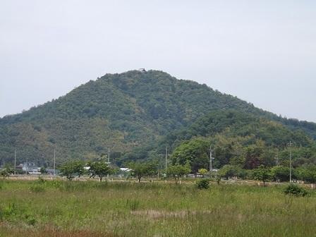 1八幡山城遠望(南から)