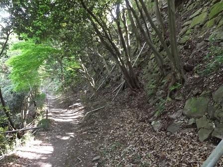 16八幡山城本丸北側石垣
