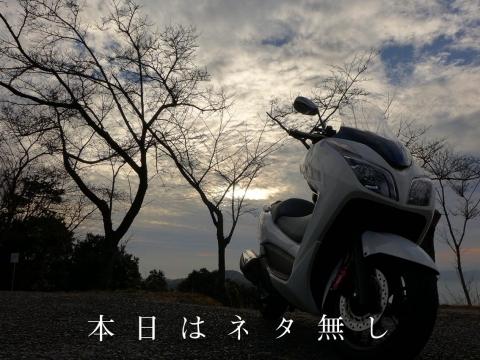15-01-20-A01.jpg