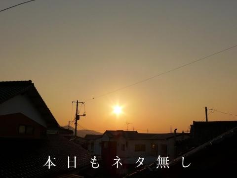 15-01-21-A01.jpg