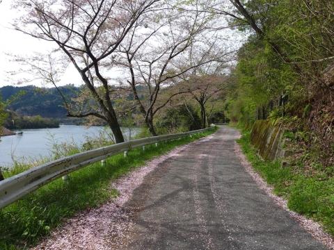 15-04-16-A01.jpg