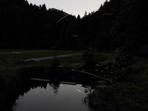 15-06-06-F06.jpg
