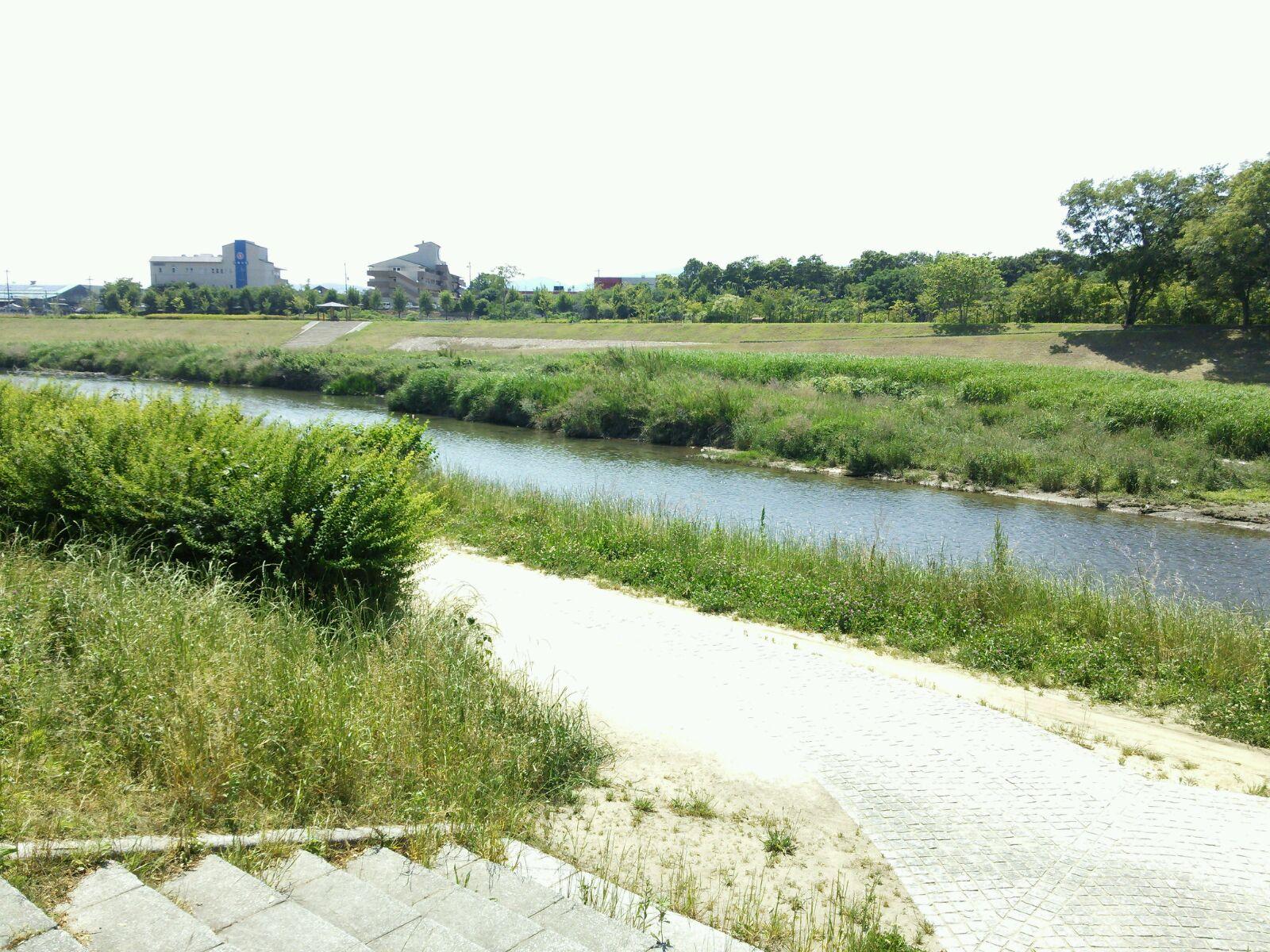 物件西側河川敷