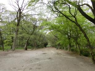 15.04.17 京都 008
