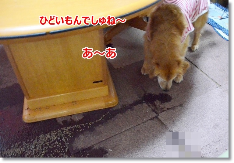 002_201505231016484ec.jpg