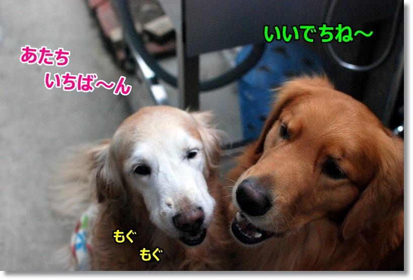 DSC_0190_20150113095251759.jpg