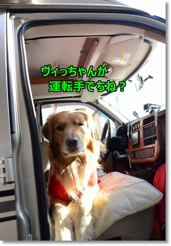 DSC_0478_20150130215733e11.jpg