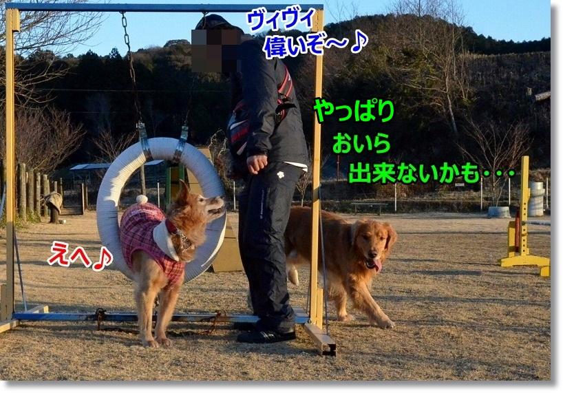 DSC_0797_20150202084156c2a.jpg
