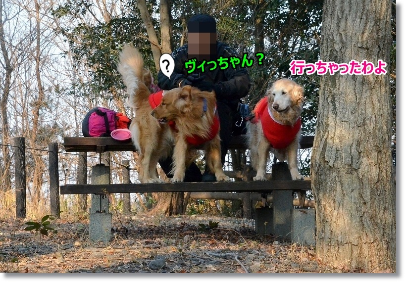 DSC_1943_20150306231351ffb.jpg
