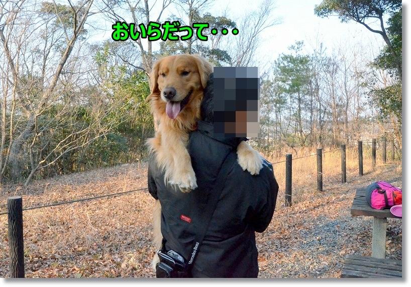 DSC_2022_2015030811214872d.jpg