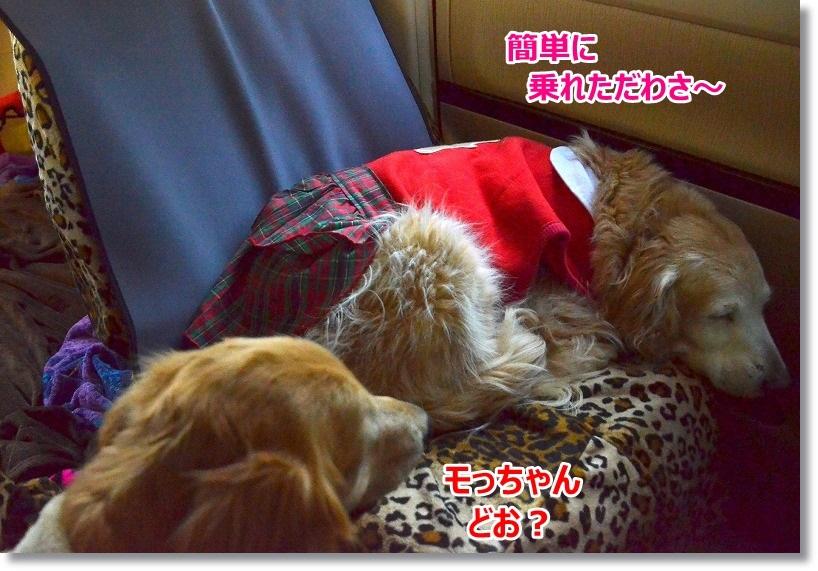 DSC_3442_20150316180246f8e.jpg