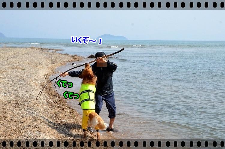 DSC_4018_2015040611222929b.jpg