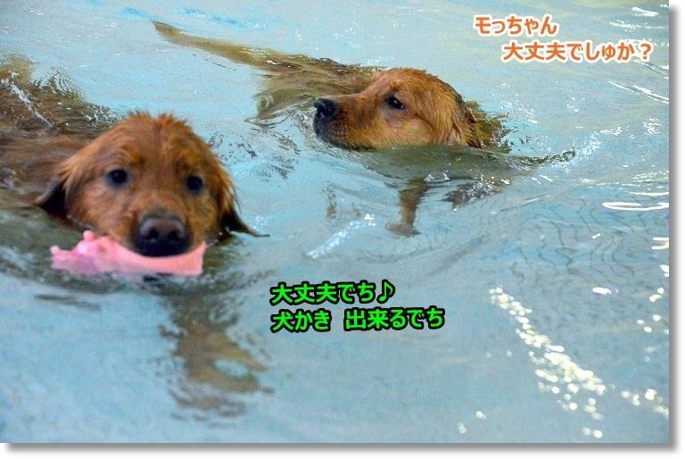 DSC_4761_201504131102194cb.jpg