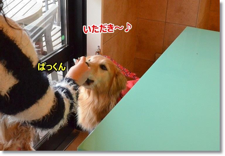 DSC_5113.jpg