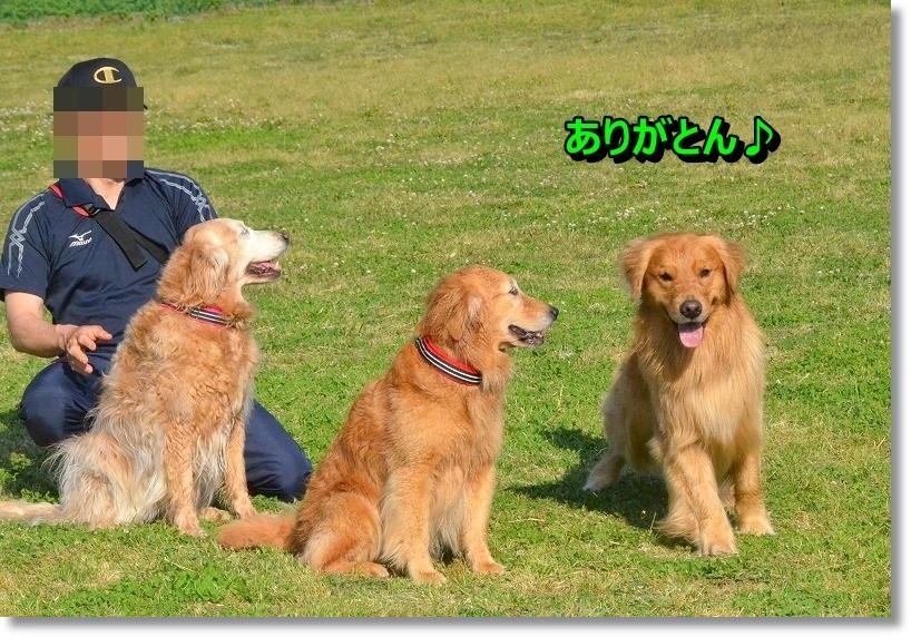 DSC_5697_20141231115214ef4.jpg