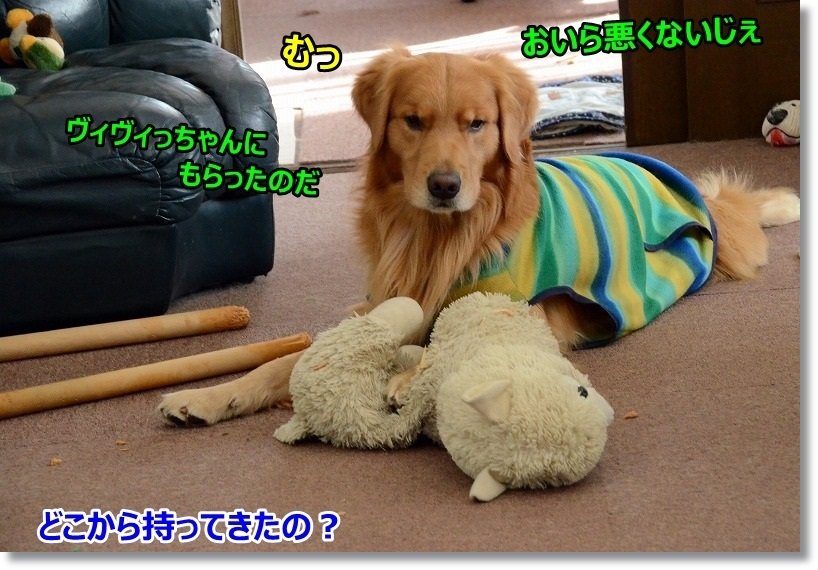 DSC_8300.jpg