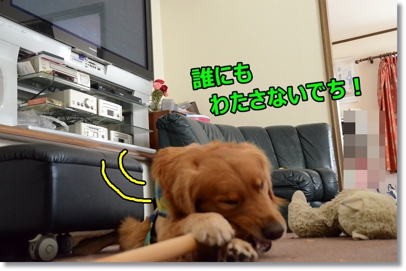 DSC_8307.jpg