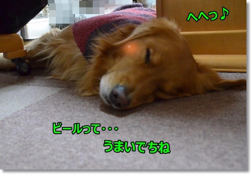 DSC_9589.jpg