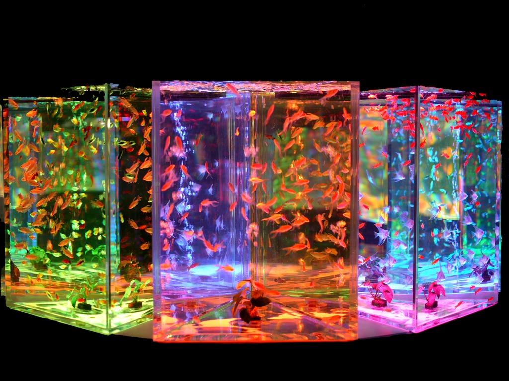 ガラスの向こうの幻想空間 夕凪の幻想空間