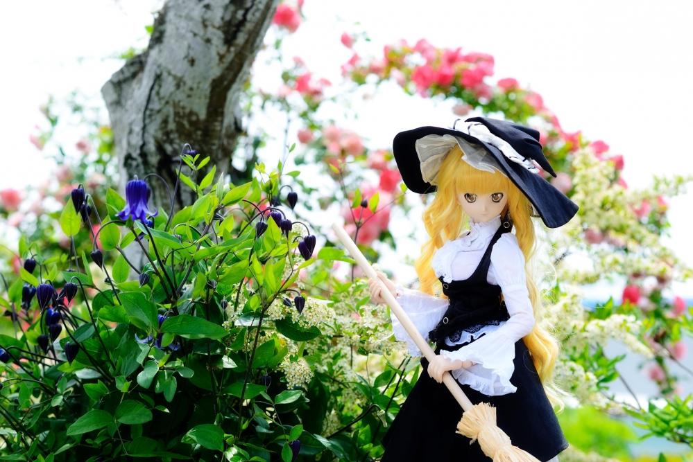 DSC_0048aa_2015052414123930b.jpg