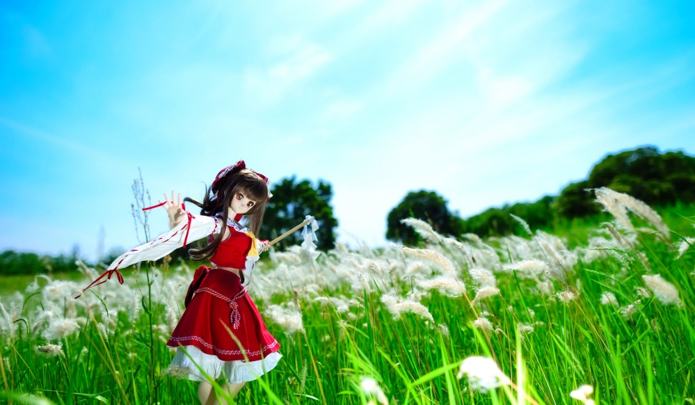 DSC_3533aa.jpg