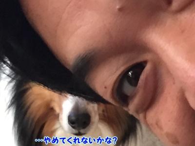 1fc2blog_20150404204205f3e.jpg