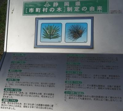 ガーデンパーク 木