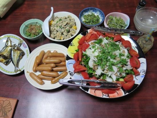 サラダと残り物の晩ご飯