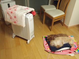 オイルヒーターで毛布を温める