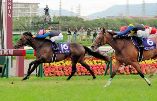 【競馬】ラブリーデイ、秋は京大→秋天→JC→有馬の王道路線