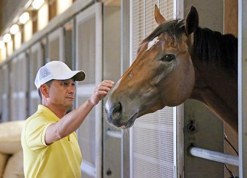 【競馬】世界最強短距離馬ビッグアーサーが負けたら人生引退