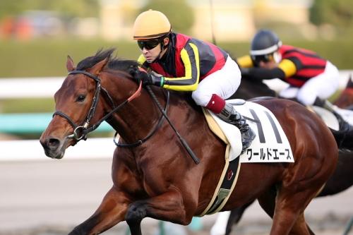 【競馬】G1は勝ってないけど種牡馬になってほしい馬