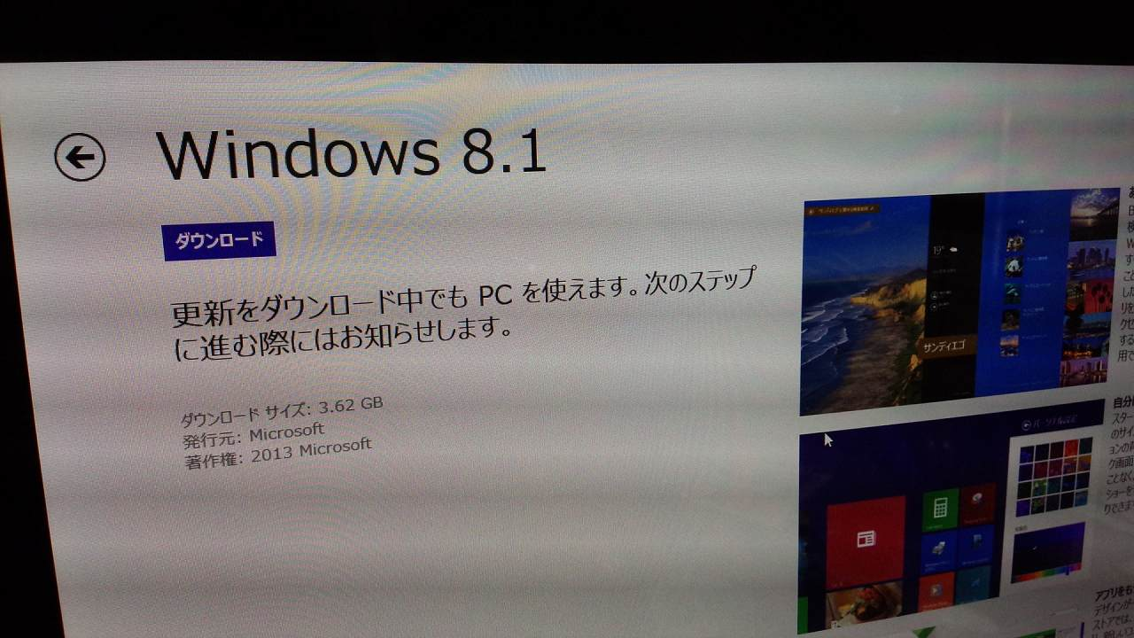 DSC_3702-s.jpg