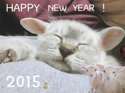 2015 こと羊年賀状