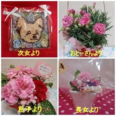 2015-5-10 母の日のお花プレゼント